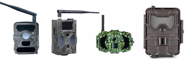 wireless trail camera reviews