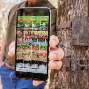 wireless trail cameras that send pictures to your phone